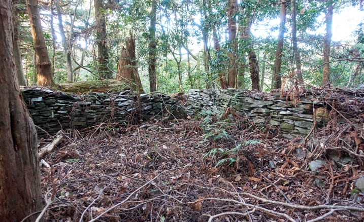 Remnants of abandoned Taiwan aboriginal traditional house - Stacked rocks and many trees