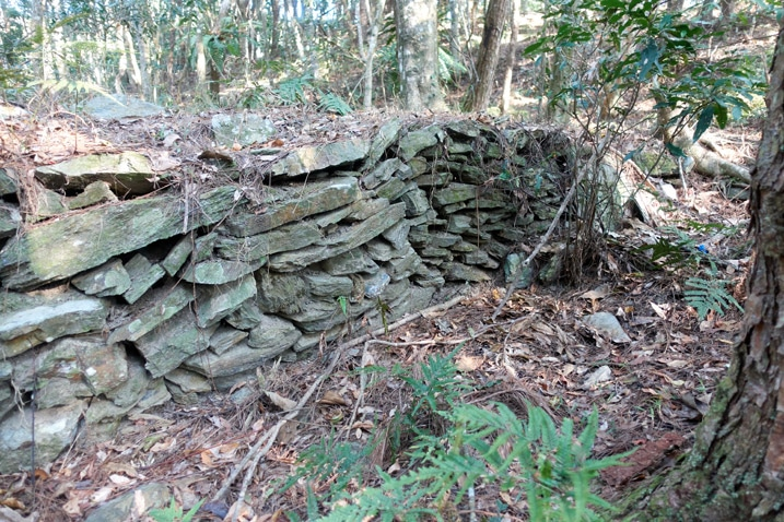 Rocks stacked up as a small wall in forest