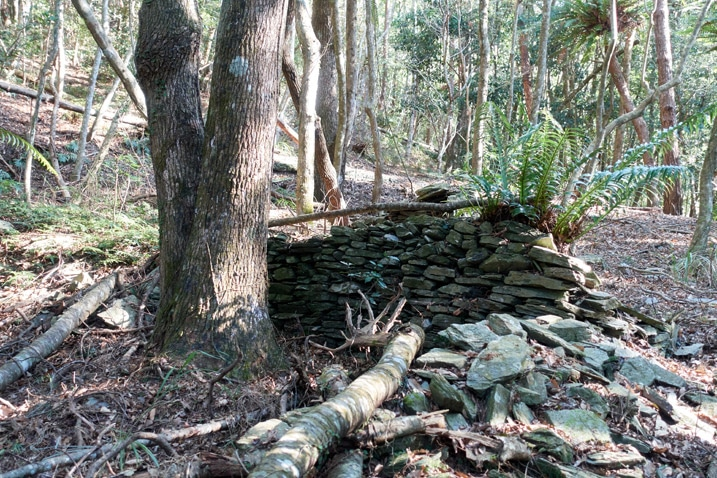 Rocks stacked as a foundation for a traditional style aboriginal structure