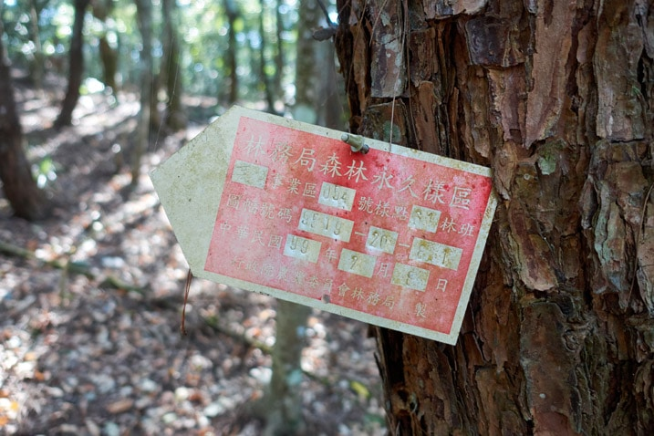 Small red sign nailed to tree