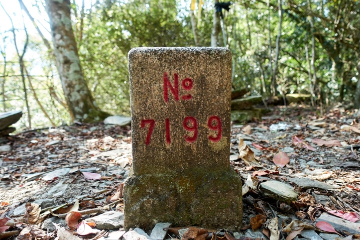 "Closeup of triangulation stone with ""No 7199"" written on it"