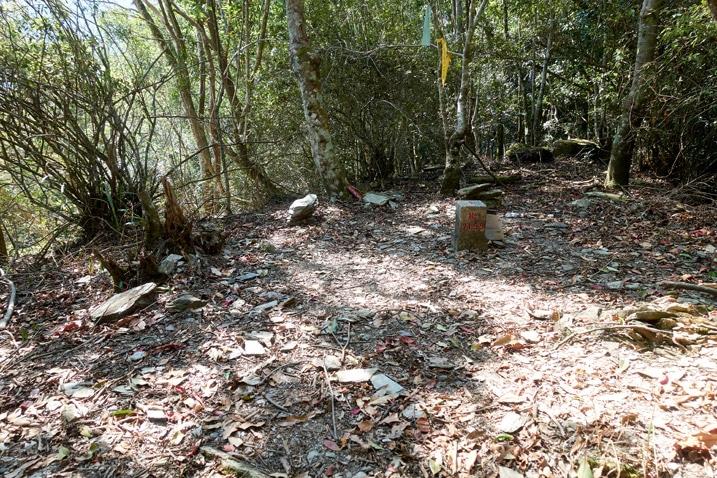 蕃里山 - FanLiShan Peak - Open area with triangulation stone