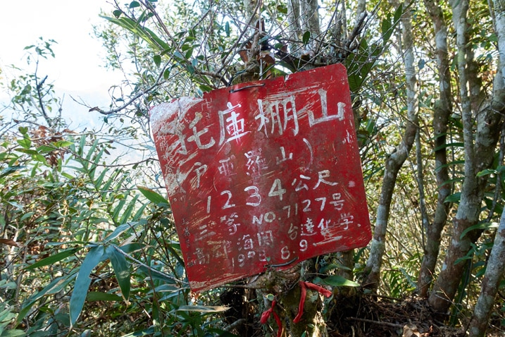 Red sign attached to a tree with Chinese on it