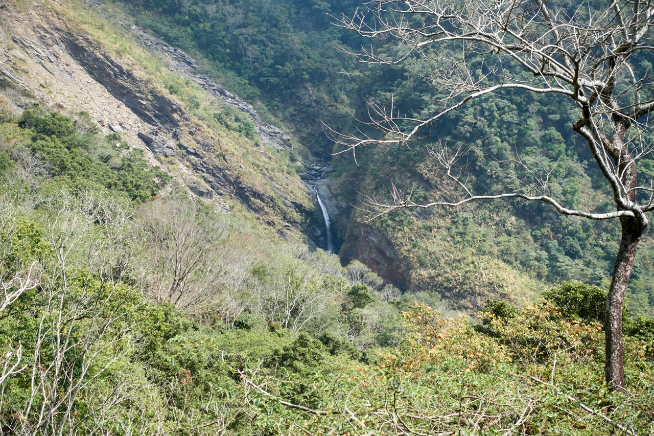 Closeup of waterfall in the distance