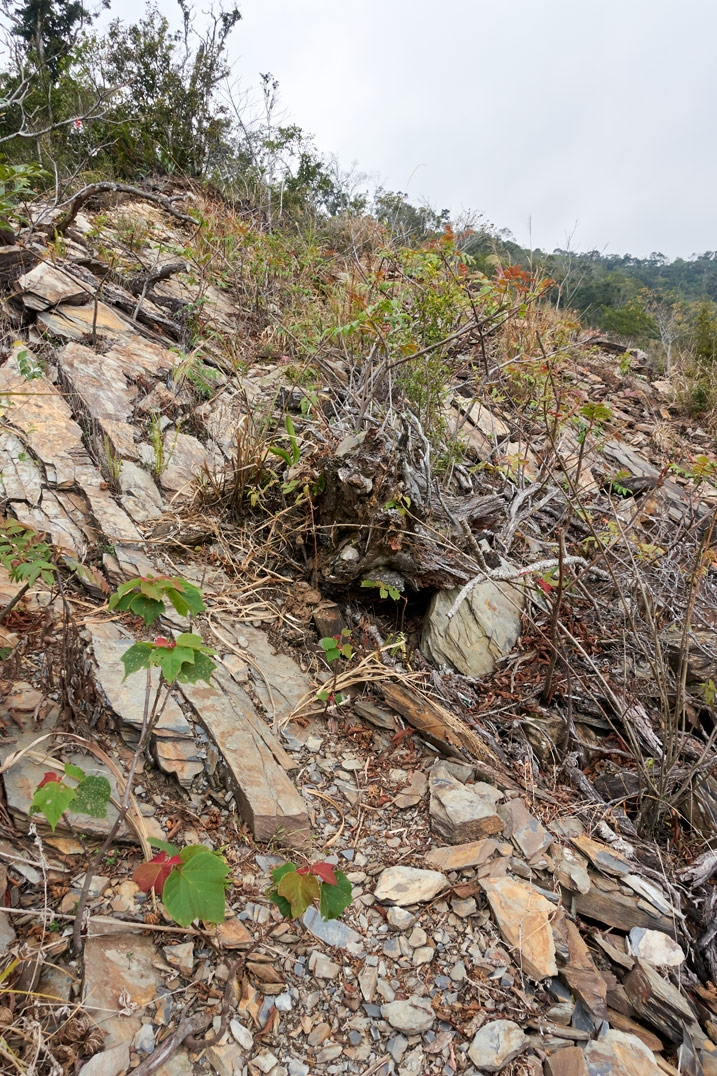 Rocky landslide closeup