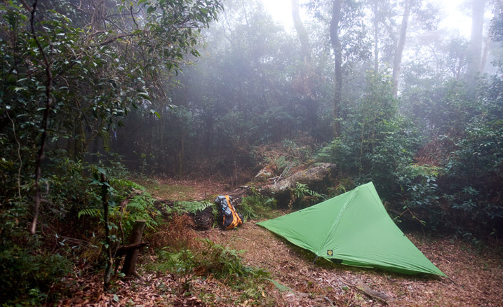 Campsite with green tent and backpack against fallen tree