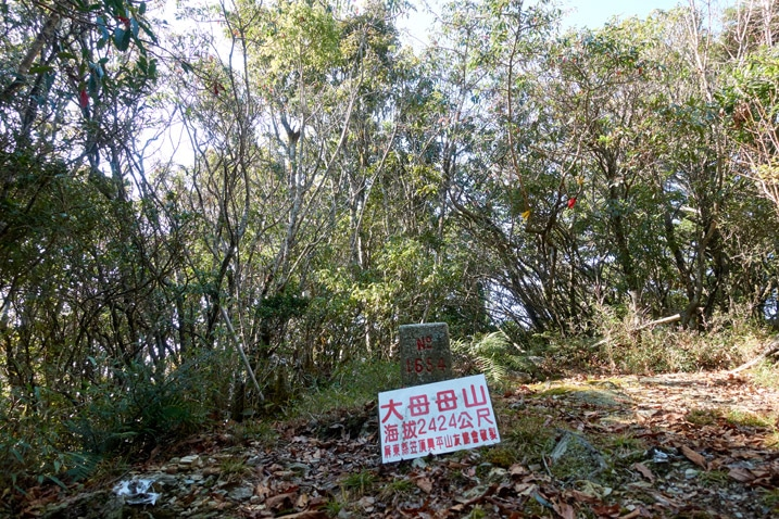 Damumushan 大母母山 peak - triangulation stone and sign