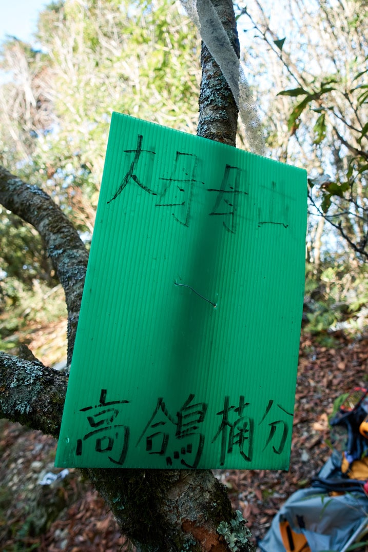 Green sign attached to tree with Chinese writing on it