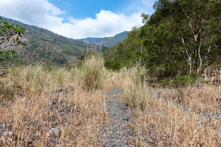 Trail through tall, dead grass - mountains in background