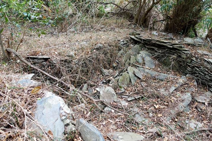 Stones stacked as base of some old structure - trees and vines all around