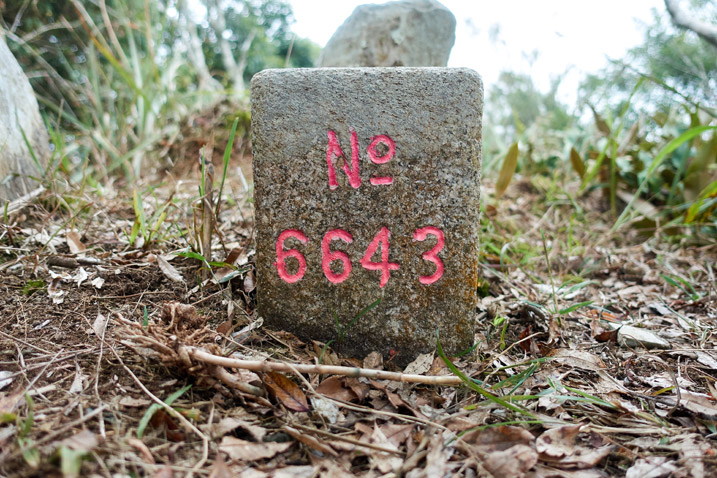 "Triangulation stone of Kashan 卡山 - ""No 6643"" written in red"
