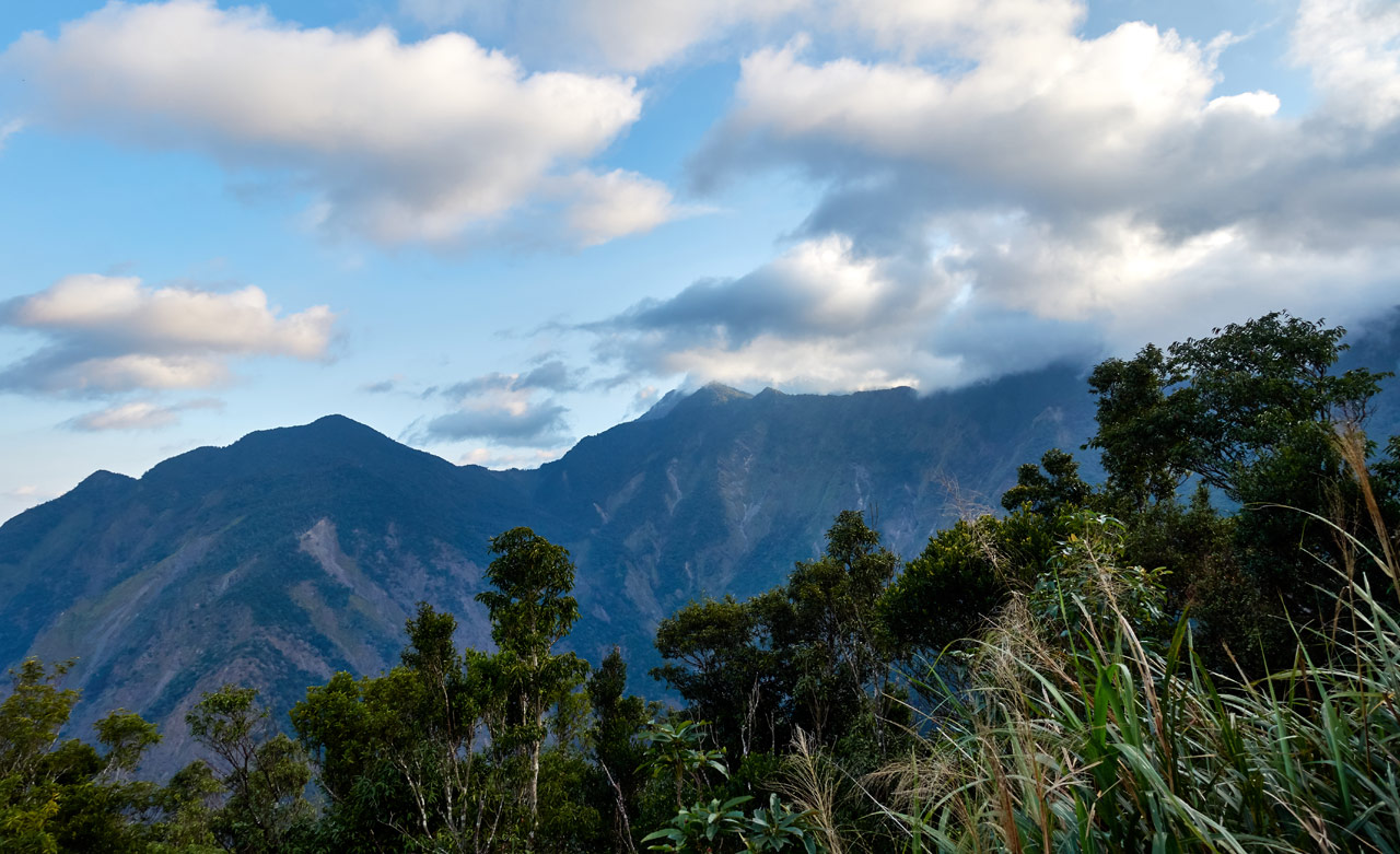 Panoramic shot of mountains and clouds - trees and bushes in foreground