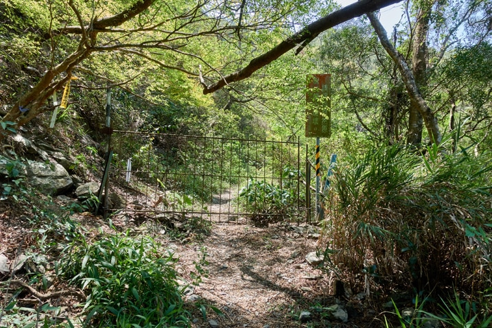 Dirt trail with gate blocking the path - trees and vegetation all around