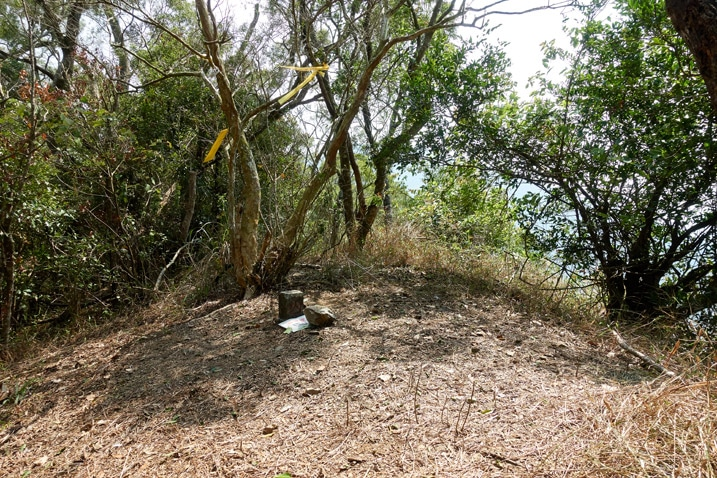 Open area with triangulation stone and small signs - trees in background - ZhuoDiLuoLiuShan - 著地螺留山