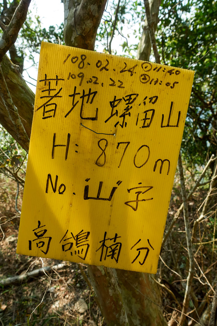Yellow sign attached to tree with Chinese writing on it