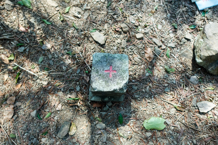 Looking down at a triangulation stone - a red 'cross' on top