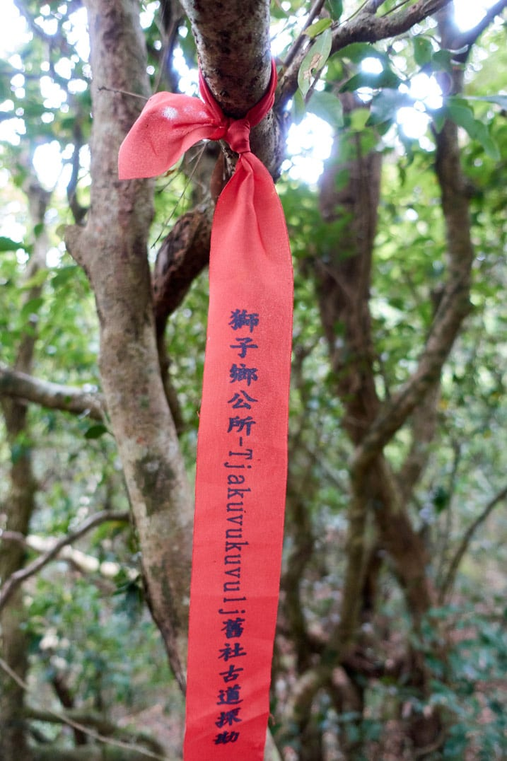 Red ribbon with Chinese and Paiwan writing tied to a tree