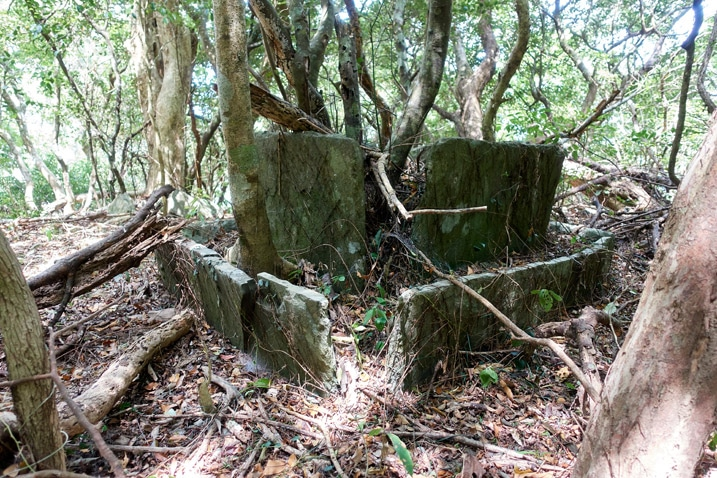 Many thin large stones laid out to form a sort of square - trees growing around