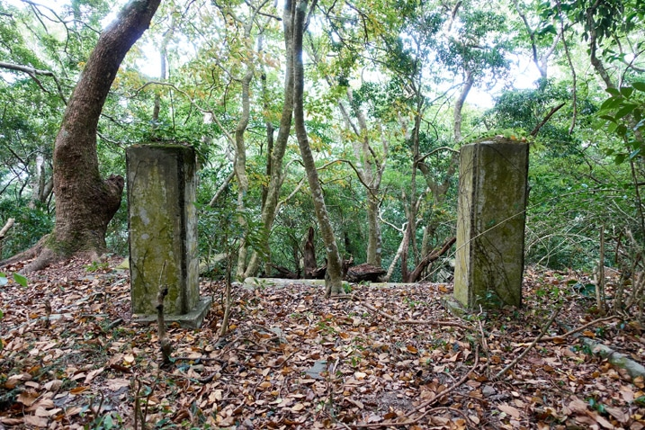 Two square pillars in mountain forest