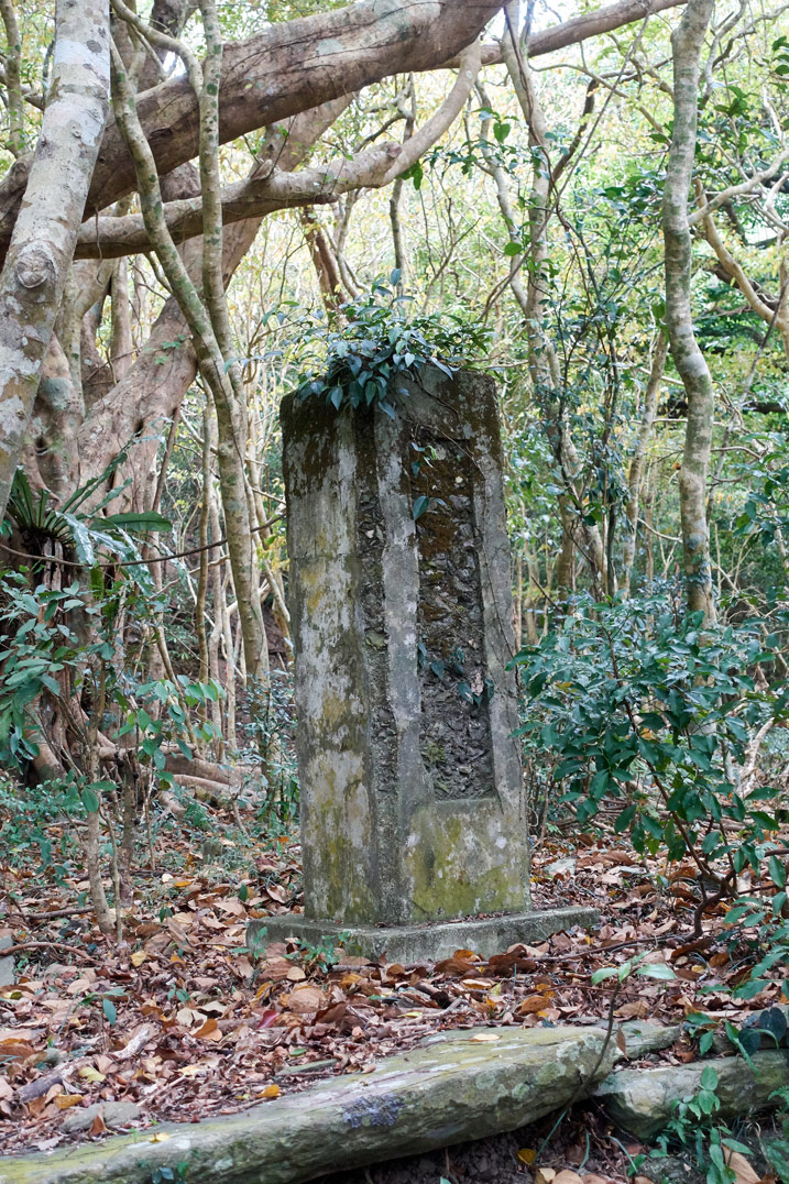 Stone pillar in mountain forest