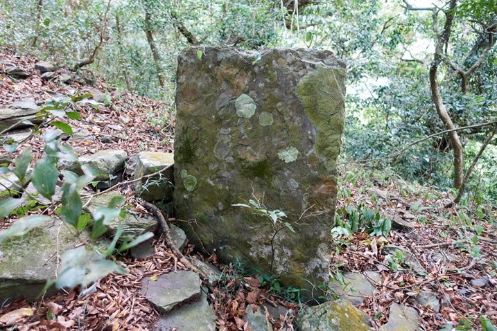Large flat stone standing upright
