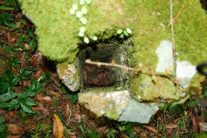 Looking into a square opening of moss-covered concrete object