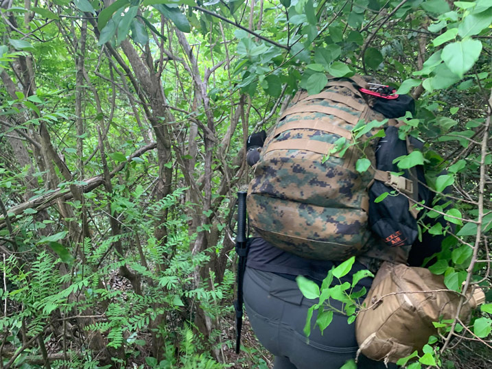 Man with camouflage backpack pushing through trees