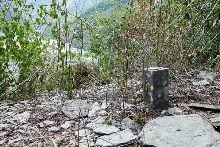Square triangulation-like stone in the ground - vegetation and riverbed in background