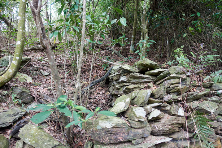 Many stacked stones on mountainside