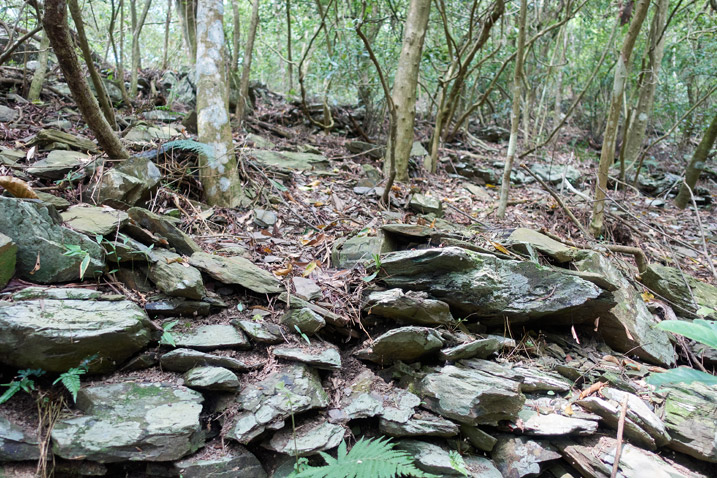 Stacked stones on mountainside with trees