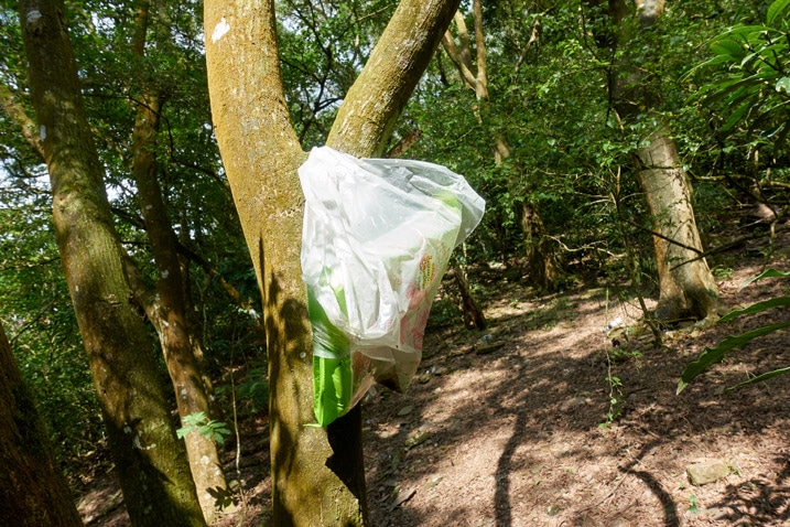 Plastic bag tied to tree with old crackers inside