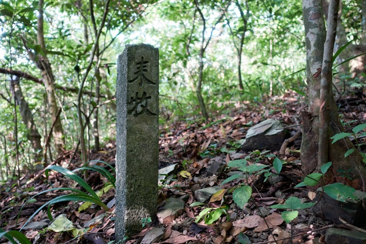 Stone pillar in forest - Two chinese characters written on it