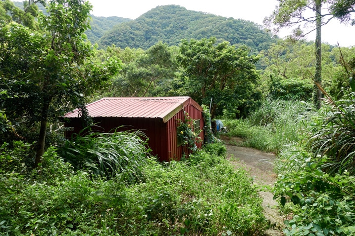 Abandoned red house in jungle - mountains in background