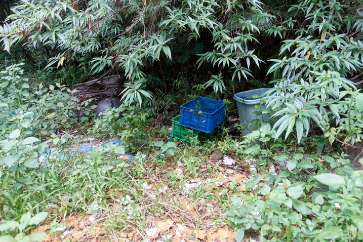 Plastic boxes discarded in mountains