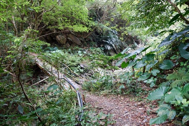 Homemade footbridge over mountain stream