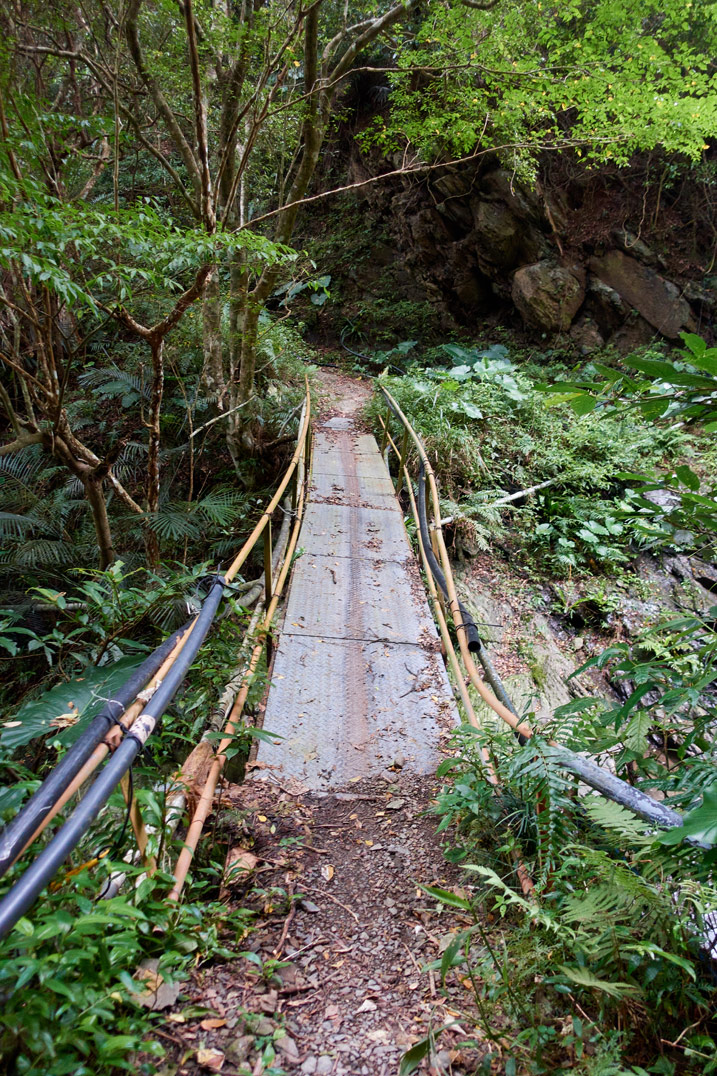 Homemade footbridge over mountain stream