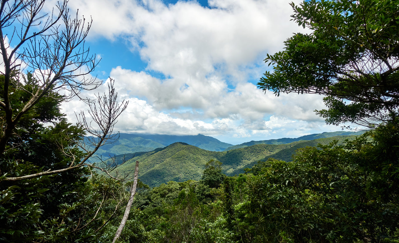 Panoramic view of mountains - blue sky and white clouds - trees in foreground