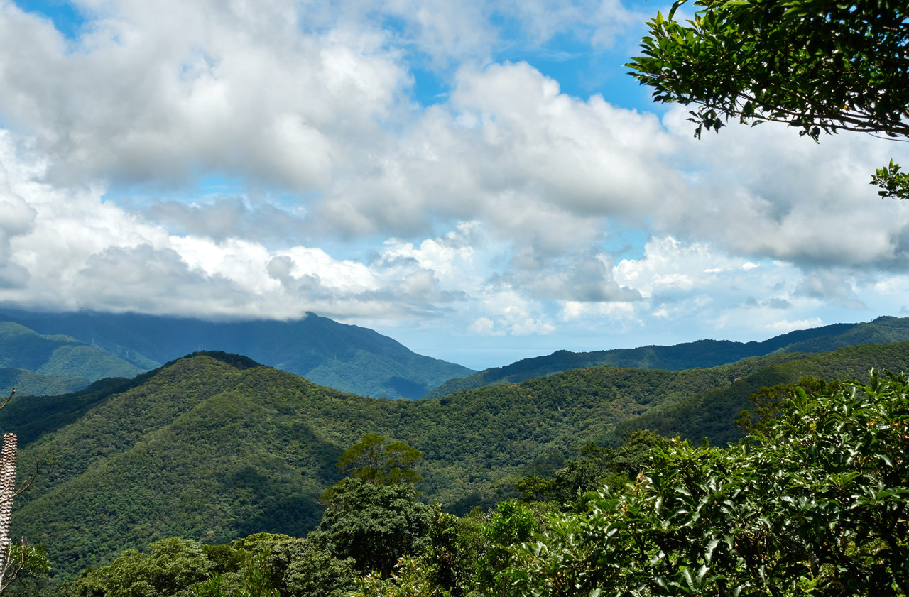 Panoramic view of mountains - blue sky and white clouds - trees in foreground - ocean in distance