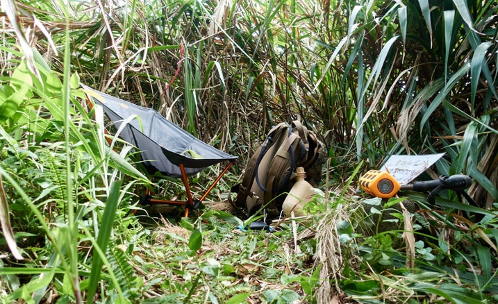 Small open area with tall grass surrounding it - chair, backpack and other items in cleared area