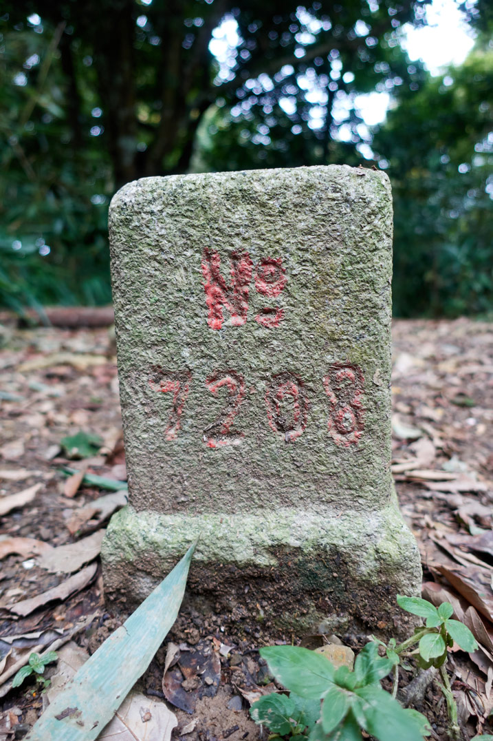 Triangulation stone with 7208 written on it