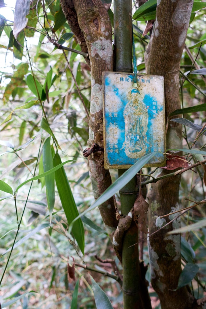 Religious article hung to tree