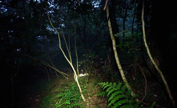 Dark mountain trail - area lit by headlamp