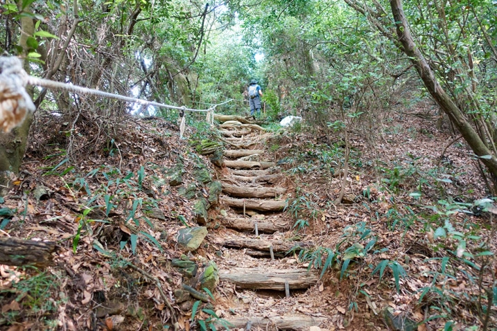 Mountain trail with small logs used to make stairs - rope on left - person at top