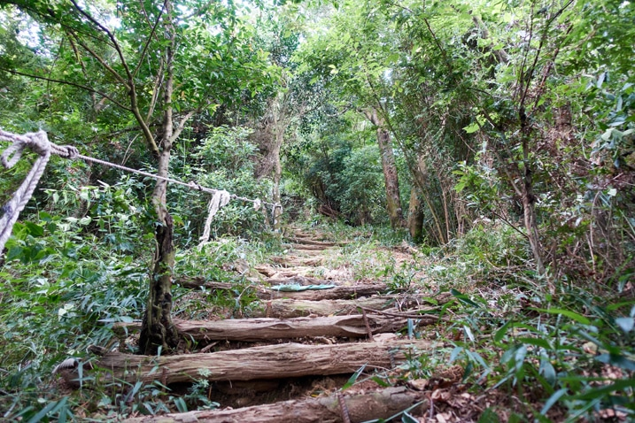 Mountain trail with small logs used to make stairs - rope on left
