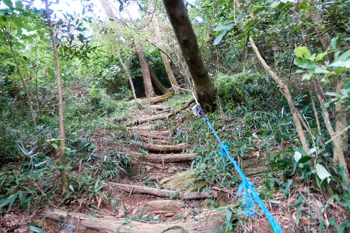 Mountain trail with blue rope on right - small logs used to make stairs