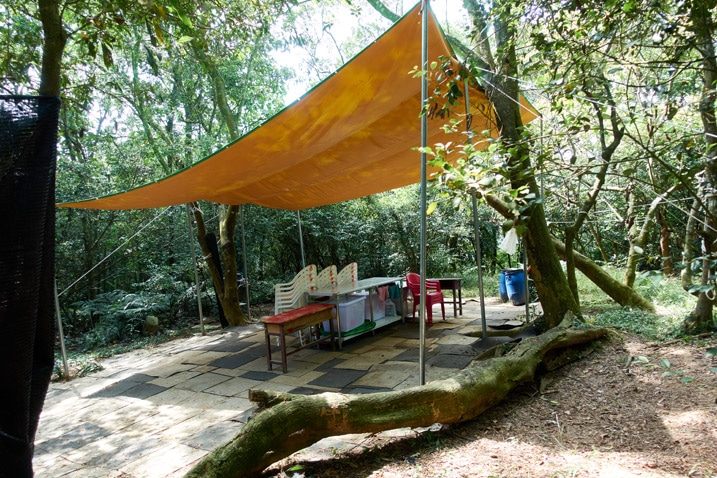 cleared area in mountain forest - chairs, tables, and orange tarp