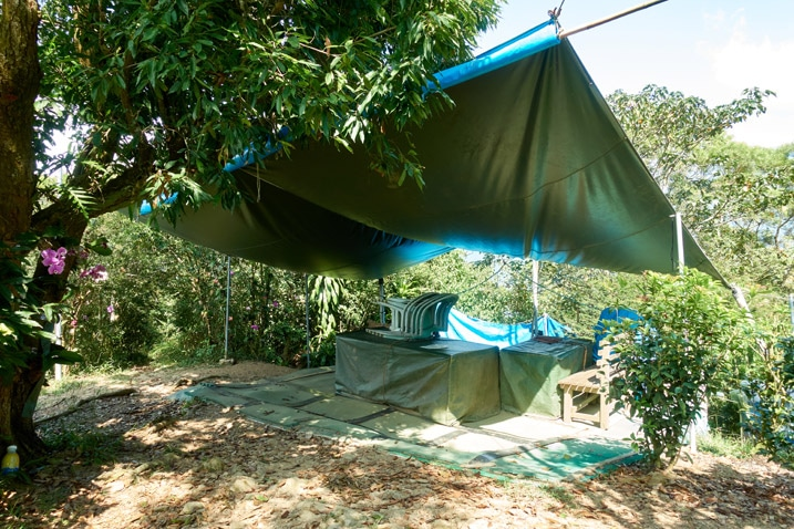 Tarp above table and chairs trees all around