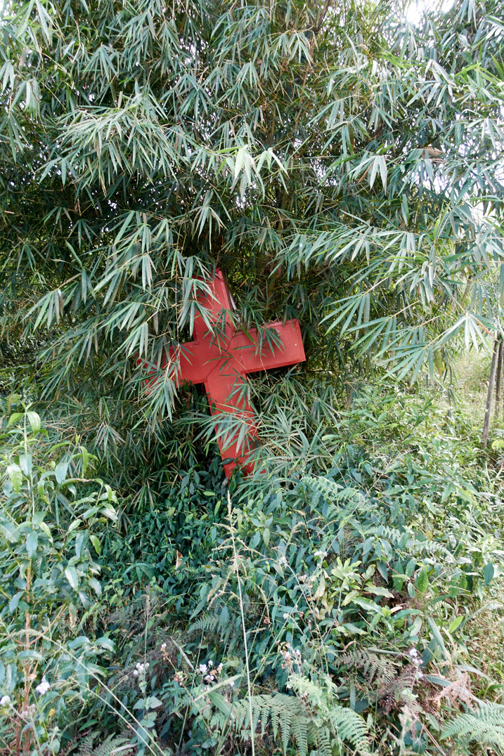Red Chirstian cross on ground with trees and vegetation growing all around it
