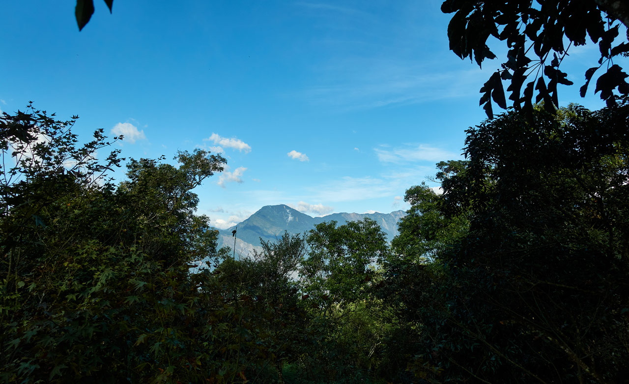 View of mountains and blue sky in the distance - Trees in foreground