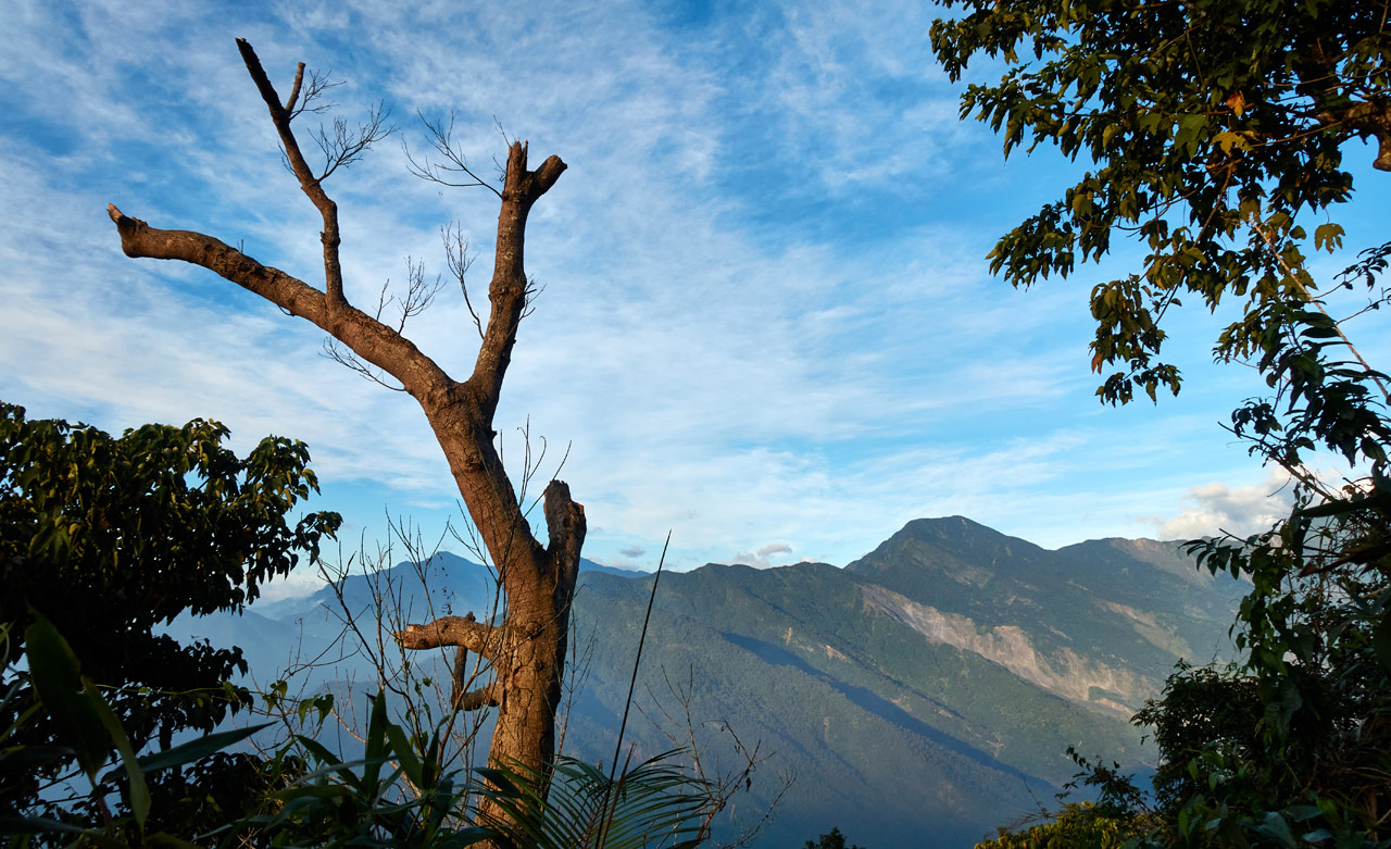 Landscape picture of mountains - dead tree in foreground to the left